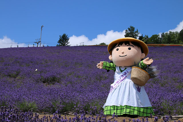 Ravishing Hokkaido Nakafurano Tourist Informationuuhokkaido With Excellent Municipal Lavender Garden With Agreeable Plastic Garden Tables Cheap Also Busch Garden Tickets In Addition Kyoto Garden Ryokan Yachiyo And Garden Centre Otley As Well As Garden Centres Warrington Additionally Busch Gardens Tampa Height Requirements From Uuhokkaidocom With   Excellent Hokkaido Nakafurano Tourist Informationuuhokkaido With Agreeable Municipal Lavender Garden And Ravishing Plastic Garden Tables Cheap Also Busch Garden Tickets In Addition Kyoto Garden Ryokan Yachiyo From Uuhokkaidocom