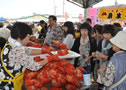 Early September,Nemuro Crab Festival